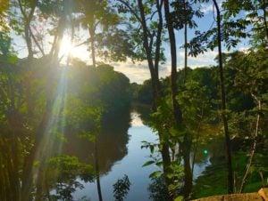 Amazon Retreat: with Shamanic and Chrysocolla Energies