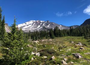My Journey to Mount Shasta the Earth's Root Chakra